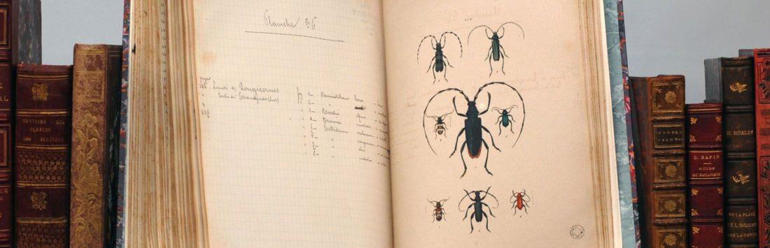 Livres du fonds ancien, collections du muséum