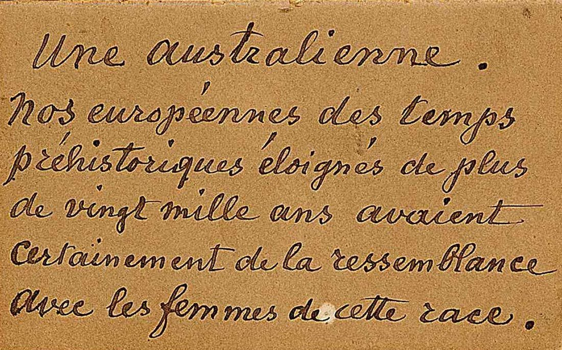 Cartel manuscrit, collections du muséum de Toulouse
