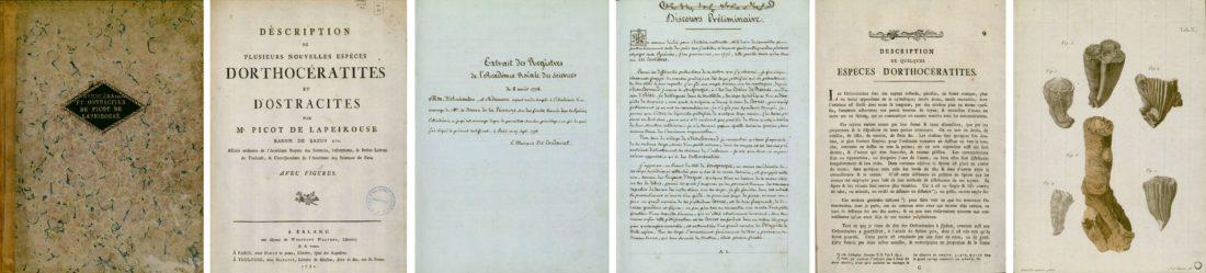 Ouvrage de Picot, collections du muséum de Toulouse