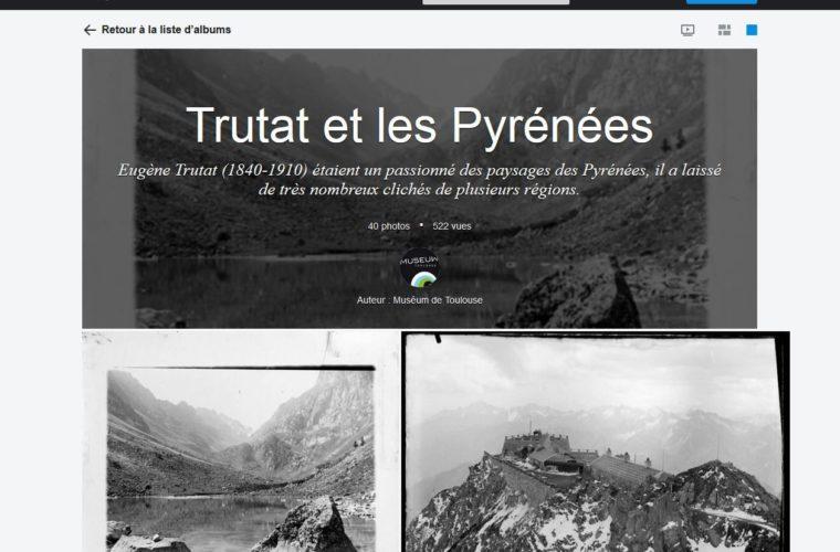 Flickr, albums Eugène Trutat