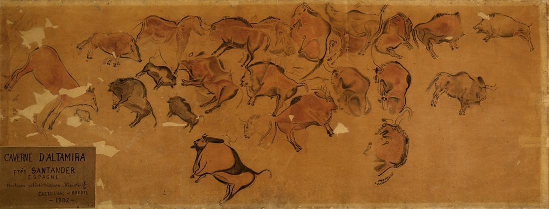 Dessin sur calque, 2,87x1m, collections du muséum de Toulouse