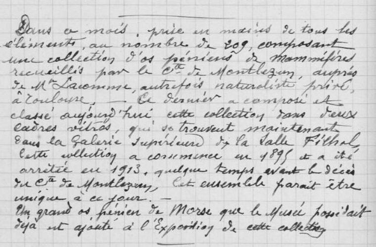 À propos de la collection d'os péniens d'Armand de Montlezun, collections du muséum de Toulouse
