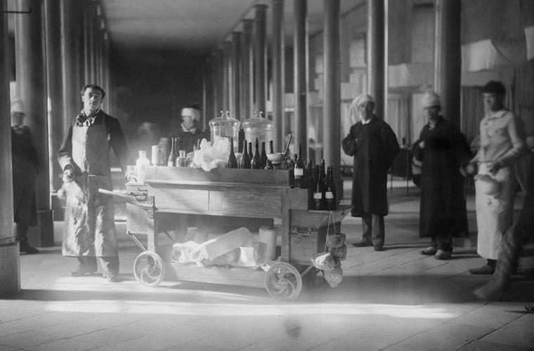 Photographie, collections du muséum de Toulouse