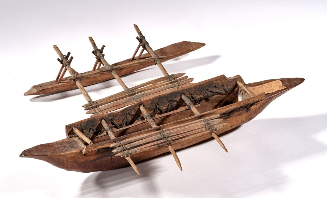 Maquette en fibres végétales, pigments et bois, collections du muséum
