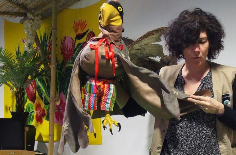 Super oiseau, muséum de Toulouse
