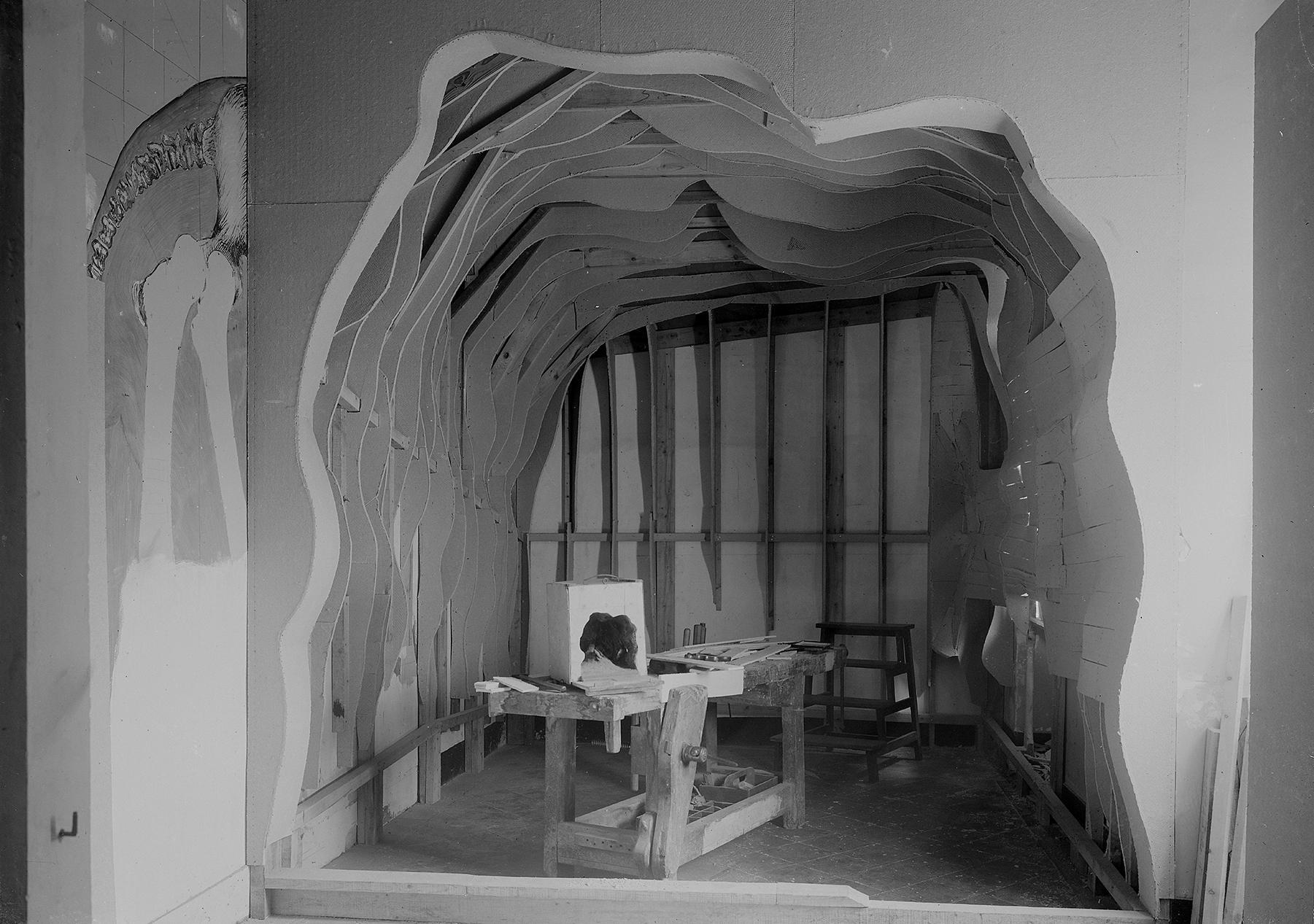 Photographie des travaux et de la maquette de travail, collections du muséum