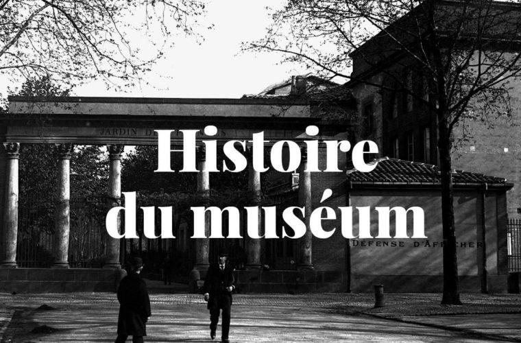 Histoire du muséum de Toulouse